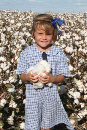 Third Australian Cotton Industry Environmental Assessment