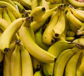 Banana Communications Report