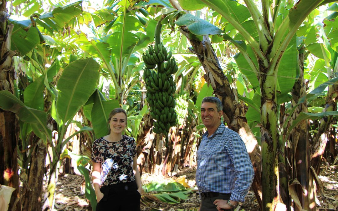 Ground-breaking Launch for Gascoyne Primary Producers